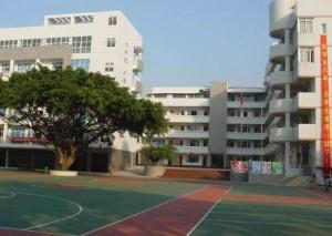 """柳州市已有百余所中小学创建""""零犯罪学校"""""""