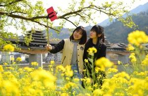 龙胜:春暖花开春意浓(组图)