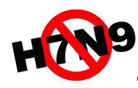 广西多部门联防联控 落实H7N9联合防控工作