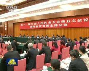 王岐山参加湖南代表团审议