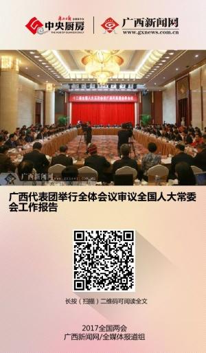 广西代表团举行全体会议审议全国人大常委会工作报告