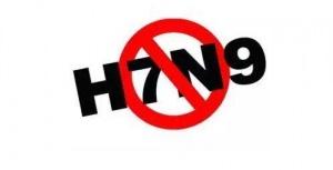 广西共报告H7N9病例10例 患者正接受隔离治疗