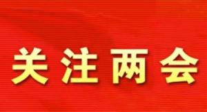 住桂全国政协委员讨论两高工作报告