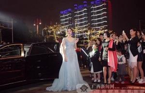 《嫁给爱情》电影首映礼在南宁举行