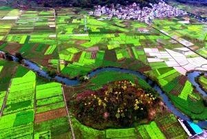 航拍:绝美春耕田园 色彩斑斓的天然调色板
