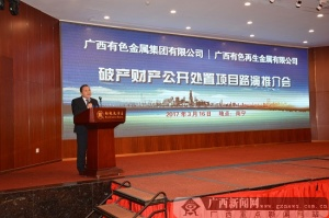 广西有色集团破产财产公处置项目推介会