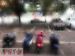 """雷电、大雾、回南天 本周多种天气将""""随机播放"""""""