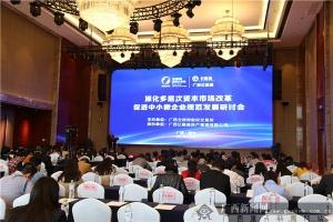 广西多层次资本市场发展研讨会在南宁举行