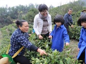 安徽歙州红茶开园节开幕