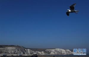 船游多佛尔白色悬崖