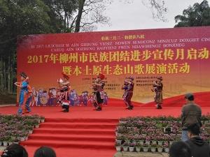 合唱团结欢歌 柳州本土原生态山歌活动精彩呈现