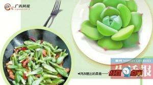 黑暗啊!有吃货把多肉植物当菜肴?