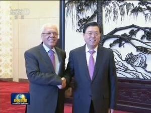张德江会见巴勒斯坦总统府秘书长
