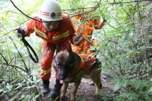 男子被困深山 消防官兵携搜救犬进山营救(组图)