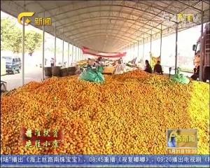 柳州:多举措精准帮扶 坚决打赢脱贫攻坚战