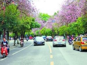 柳州:路边车位免费停车一小时正式实施