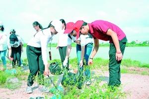 钦州市各界开展清洁家园美化环境活动