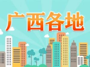 [砥砺奋进的5年]边贸红利惠边民 走进龙州县水口镇共和村