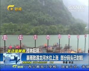 阳朔:暴雨致遇龙河水位上涨 部分码头已封航