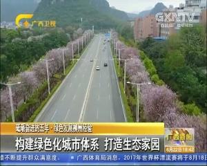 柳州建绿色化城市体系 打造生态家园