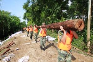 高清:合浦一堤段塌方 北海边防官兵奋力抢险