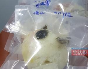 鸡蛋壳上的斑点可能是沙门氏菌 打鸡蛋前先清洗