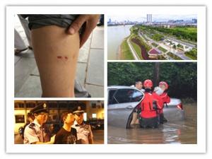 7月14日焦点图:办公区养三只狗 市民办事被咬伤