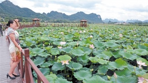 上林县立体养殖保护生态收益多
