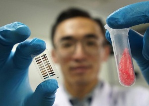 东南大学研究人员发现新型材料 有望实现用衣服给手机充电