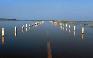 """鄱阳湖再现""""最美水上公路"""""""