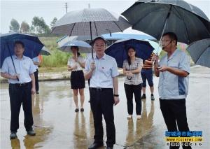 金湘军率队调研防城港重大项目建设