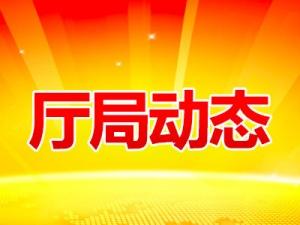 广西推进用地方式改革 5年供应建设用地8万多公顷