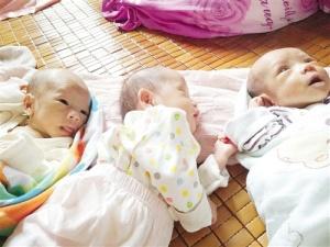 二胎妈妈生下三胞胎 一家六口压力剧增喜上又添愁