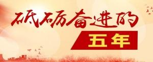 """【砥砺奋进的五年】广西职教竭诚服务""""一带一路"""""""