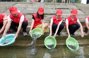 改善水域生态环境 20万尾鱼苗放流融江(图)