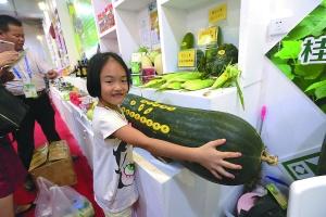 东博会农业展:创意产品新奇特 惊艳味蕾和眼睛