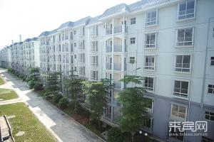 来宾市10月底发放1700套公租房(图)