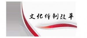 范晓莉:创新推动文化体制改革