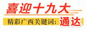 广西:建好管好运营好立体交通体系