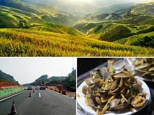 14日焦点图:泉南高速桂柳段恢复施工 请谨慎驾车