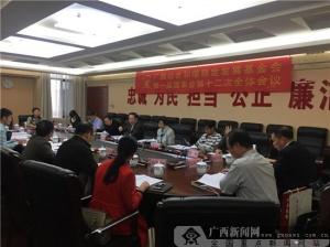 广西社会和谐稳定发展基金会召开第一届十二次会议