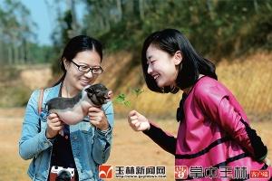 【砥砺奋进的五年】陆川:发展特色 补齐县域经济短板