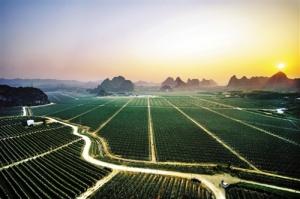 调结构 促改革 增加农民获得感和幸福感