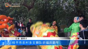 桂平市农村多支狮队祈福庆新年