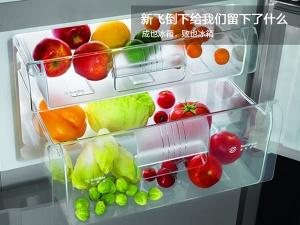 成也冰箱,败也冰箱,新飞倒下给我们留下什么?