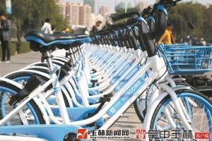 两天投放800辆 共享单车来了