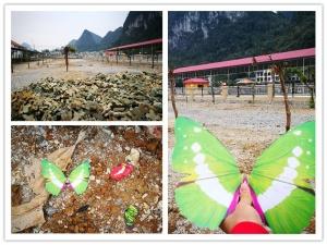 高清:南宁蝴蝶展展出塑料蝴蝶 被曝光后紧急清理