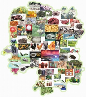 喜讯!湖南新增4个国家地理标志保护产品