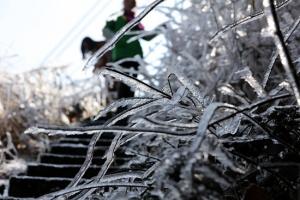 三江大塘坳现冰凌景观 银装素裹冬景如画(视频/图)
