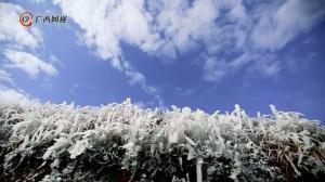 亮眼!走进柳州的冰雪世界 耳朵冻掉都不觉得冷了